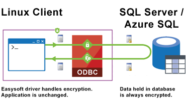 SQL Server 2016: Always Encrypted. Data encrypted on client by ODBC layer. Application remains unchanged. Data held in SQL Server / Azure SQL is always encrypted.